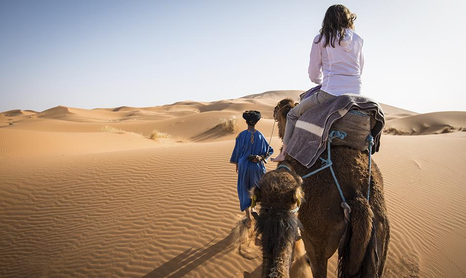Embark on a sunset camel ride through desert dunes.