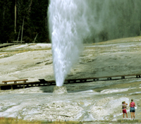 Grand Teton & Yellowstone National Parks Tours 2020 - 2021 -  Yellowstone Park