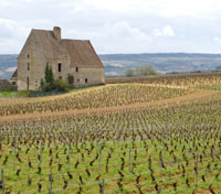 Gastronomic Journey of France Tours 2019 - 2020 -  Beaune
