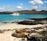 Galapagos by Land & Sea Tours 2019 - 2020 -  Galapagos Cruise