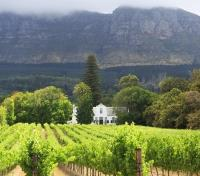 Cape Town, Winelands & Safari Tours 2017 - 2018 -  South Africa Stellenbosch Landscape