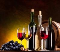 Croatia Explorer Tours 2020 - 2021 -  Wine Tasting