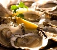 Croatia Signature Tours 2020 - 2021 -  Oysters